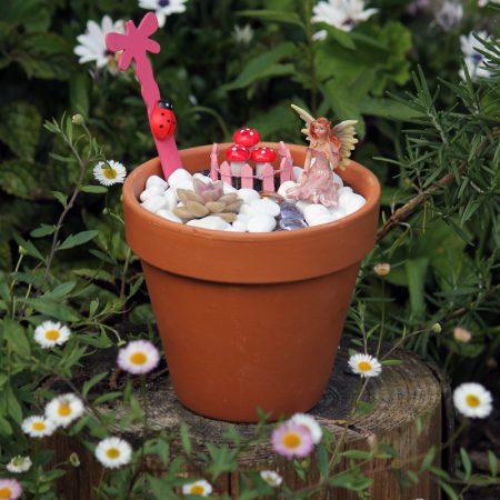 fairy garden nz