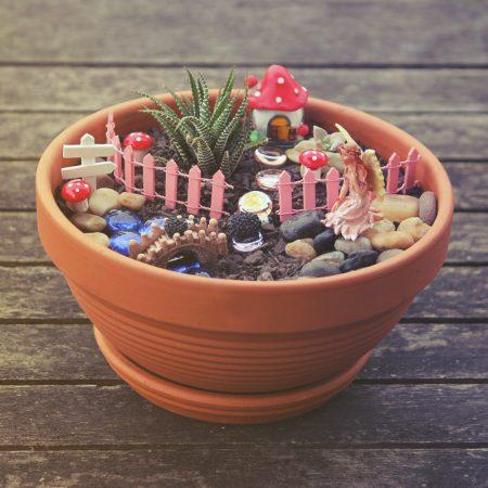 fairy garden kitset