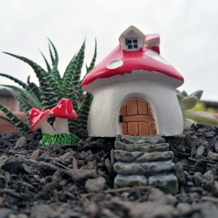 fairy gardens nz