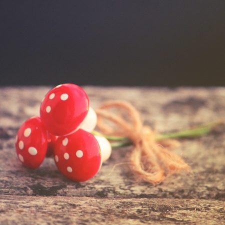 mushrooms on sticks
