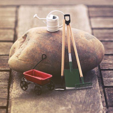 miniature gardening tool set