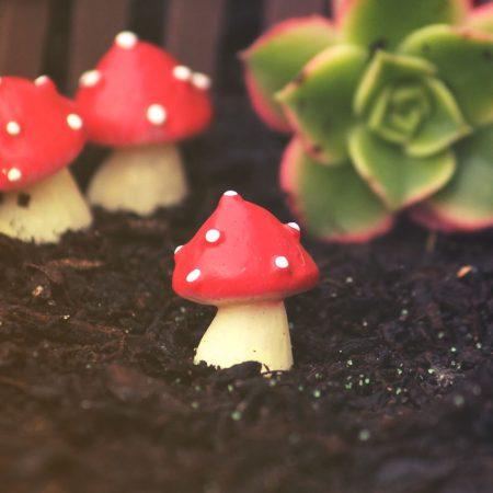 resin mushrooms