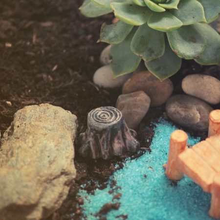 tiny tree stump fairy garden