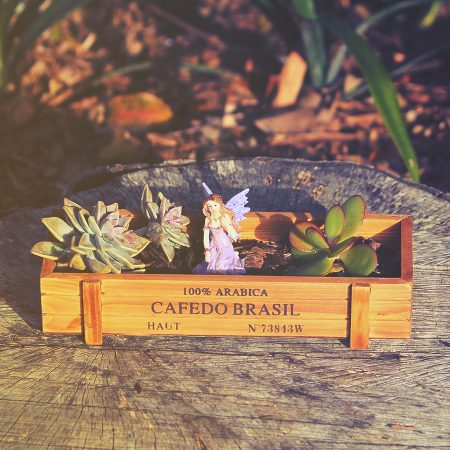 miniature wooden planter