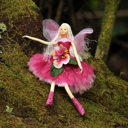 feijoa fairy nz