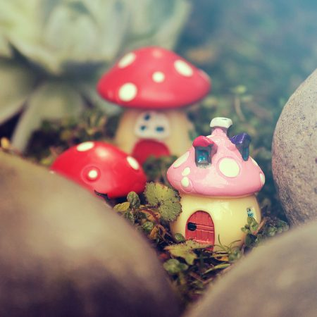 fairy mushroom house nz