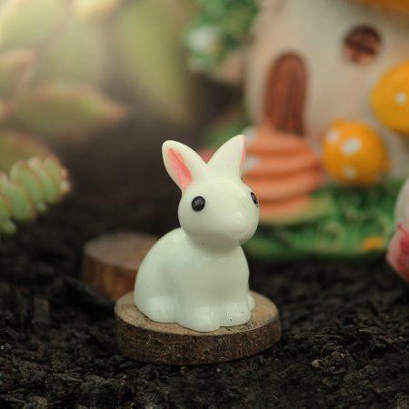 fairy rabbit
